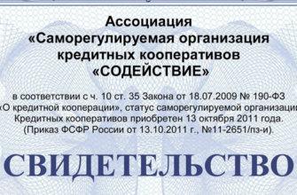 СРО-РЦМ мини